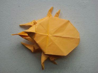 Origami Beetle 5.1.2017