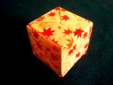 Leaf Snobe Cube 11.19.2017