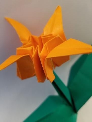 Origami Narcissus