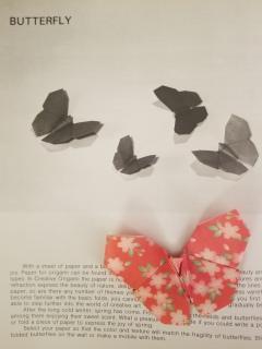 Yoshizawa Butterfly 6.8.2019